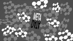 metadatos